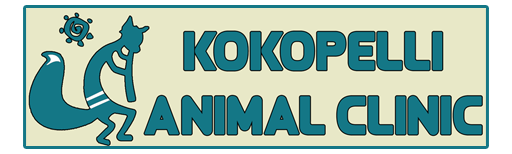Kokopelli Animal Clinic